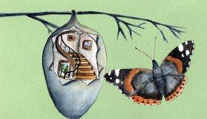 cocon-papillon